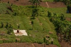 Farming Lake Mutanda || Uganda