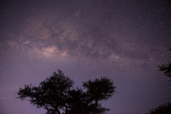 Serengeti Milky Way || Serengeti National Park, Tanzania