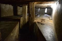 Sobering Site of Former Slave Cell || Old Slave Market, Zanzibar