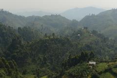 Virunga Mountains || Uganda