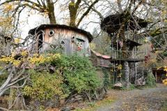 It's A Burl || Kerby, Oregon