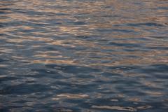Sunset on the Salish Sea    Rosario Straigt, Washington