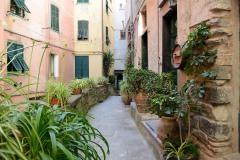 Streets of Vernazza || Cinque Terre