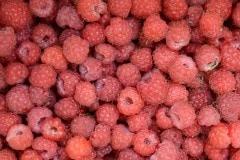 Raspberries || Finland
