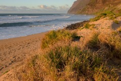 Polihale Beach || Kauai, Hawaii