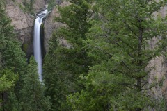 Tower Fall    Yellowstone NP