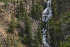 Undine Falls    Yellowstone NP