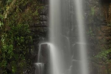 Study of Salto Chico || Iguazu Falls, Argentina