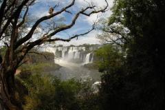Upper Circuit || Iguazu Falls, Argentina