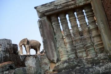 Pre Rup at Angkor    Siem Reap, Cambodia