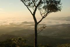 Cerro Musún || Nicaragua