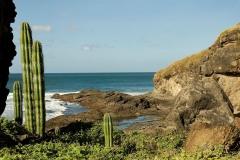 Playa Popoyo || Nicaragua