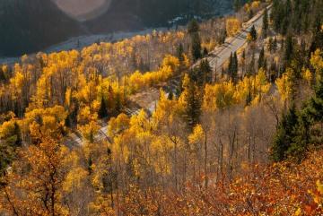 Autumn Highway || Colorado
