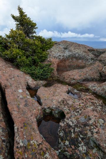 Devils Head || Colorado