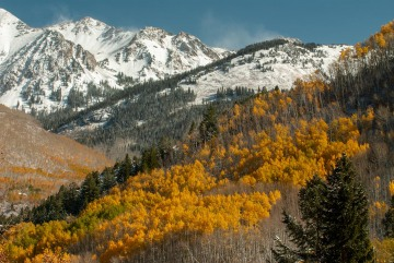 Elk Mountains in Fall    Colorado