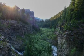 Evening in West Elk Wilderness || Colorado