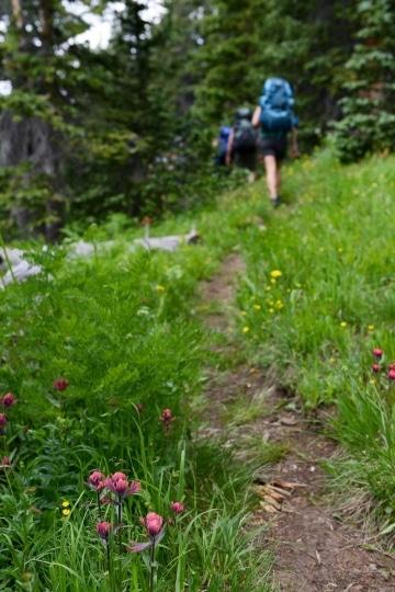Hiking Mill Castle Trail || Colorado