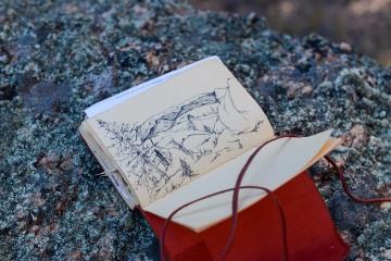 Lost Creek Wilderness Sketch || Colorado