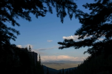 Mill Creek Valley framed by Pines || Gunnison National Forest, CO