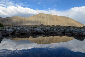 Mt Columbia Reflections || Colorado