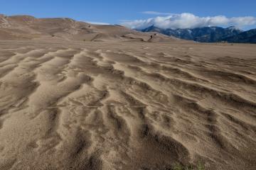 Recent Rain in Dunes     Great Sand Dunes NP, CO