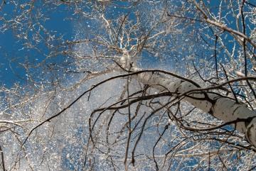 Snow and Blue Sky || Colorado
