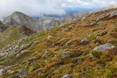 Alpine Beauty Beneath Mt. Harvard || Colorado