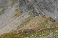 Alpine Ridge to Mt. Harvard    Colorado
