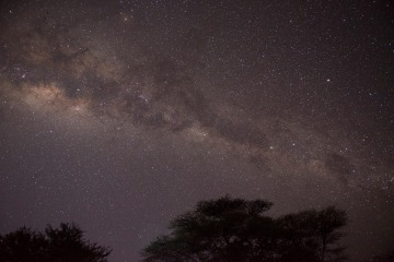Milky Way over the Serengeti || Serengeti National Park, Tanzania