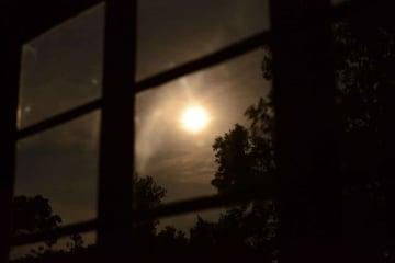 Nkuringo Moon || Uganda