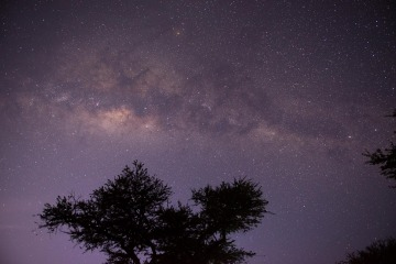 Serengeti Milky Way || Serengeti National Park, Tanzania