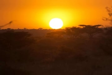 Serengeti Sunset || Serengeti National Park, Tanzania