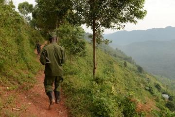 Virunga Path || Uganda
