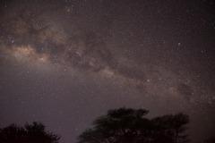 Milky Way over the Serengeti || Serengeti National Park, Tanzania
