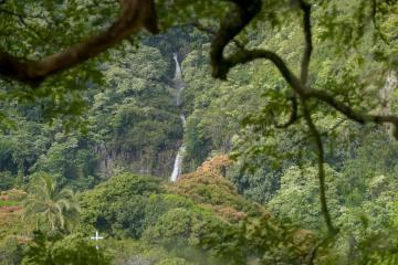 Paihi Falls || Maui, Hawaii