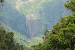 Halawa Valley || Molokai
