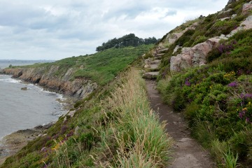Hiking in Howth || Ireland