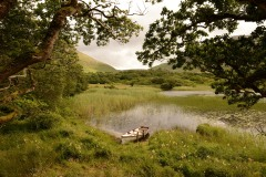 Grounds of Kylemore Abbey || County Mayo