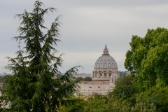 St Peter's Basilica Dome    Rome