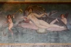 The Birth of Venus || Pompeii