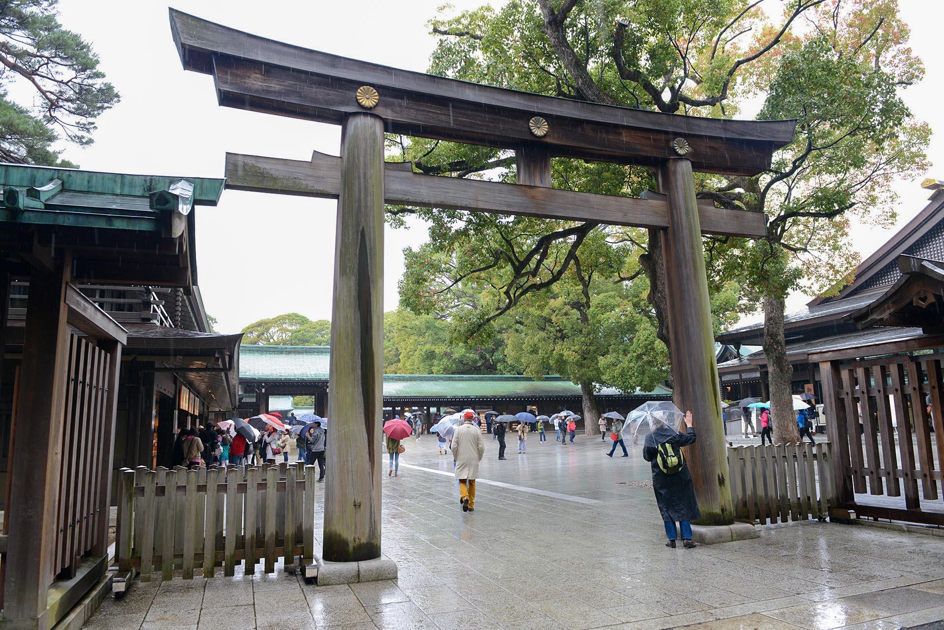 Entrance to Meiji Shrine || Shibuya, Tokyo