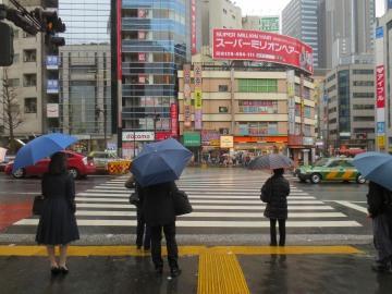 Shibuya Crossing || Tokyo