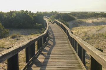 Cumberland Island Boardwalk || GA