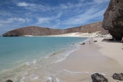 Balandra Beach || La Paz