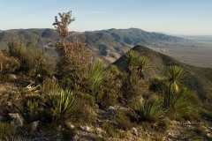 High Desert || Real de Catorce
