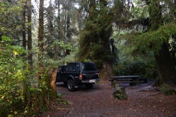 Elk Prairie Campground || Prairie Creek Redwoods State Park, CA