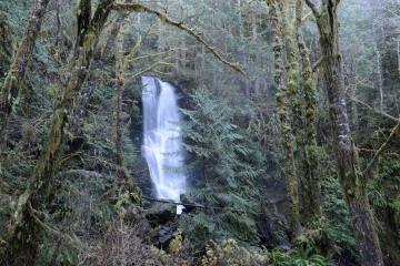 Merriman Falls || Olympic National Park, Washington