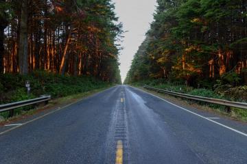 Oregon Coast Highway 101 || Olympic National Park, Washington