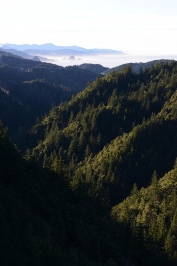 Pacific Vistas from Rogue River-Siskiyou National Forest || Oregon