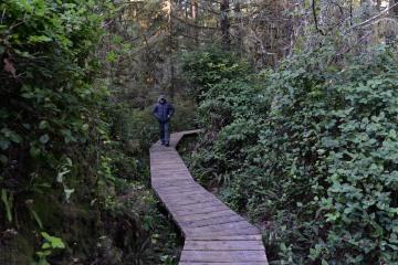 Rainforest Trail || Ucluelet, BC, Canada